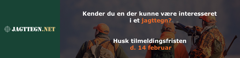 Haglgeværskursus hos jagttegn.net