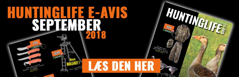 e-Avis September 2018