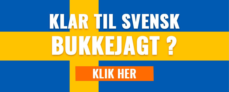 Se vores udvalg til svensk bukkejagt